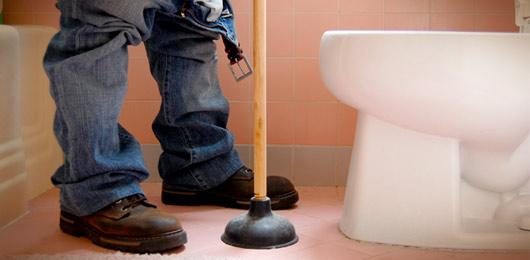Toilet Feature