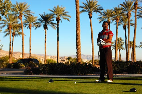 A person standing in front of a palm tree playing golf