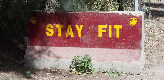 Functional Strength: Fit to Fight, Fit for Life