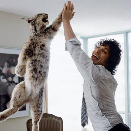 High fiving a cheetah