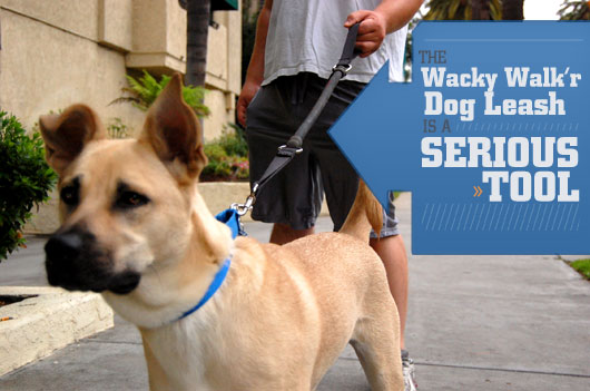 The Wacky Walk'r Dog Leash is a Serious Tool