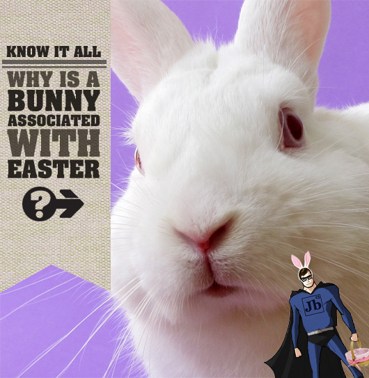 Know It All: Why is a Bunny Associated with Easter?