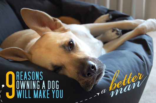 9 Reasons Owning a Dog Will Make You A Better Man