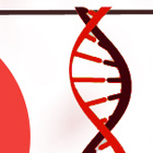 17 Things You Should Know About DNA [infographic]