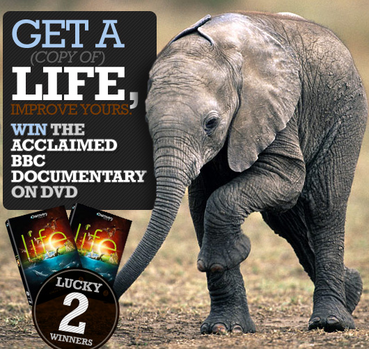 Get a (copy of) Life, Improve Yours: Win the Acclaimed BBC Documentary on DVD
