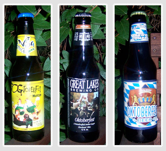 3 bottles of fall beer