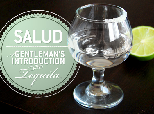Salud: A Gentleman's Introduction to Tequila
