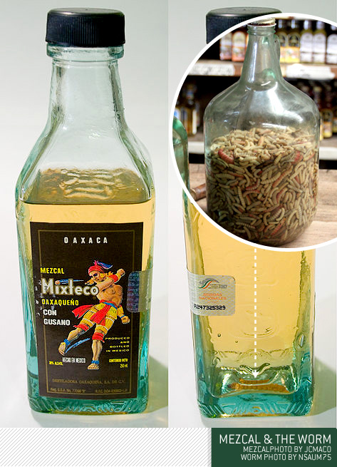 mezcal and the worm bottle