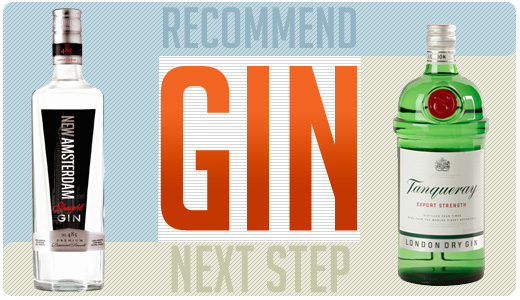 Recommended Gin and Next Step