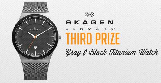 Skagen third prize