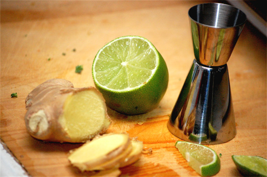 Ginger slices next to lime and cocktail jigger