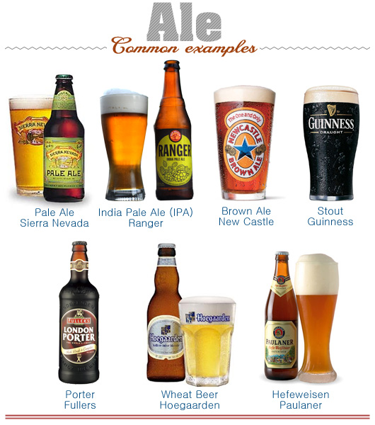 Illustration of common examples of ale beer
