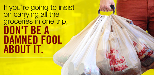 If You're Going to Insist on Carrying All the Groceries in One Trip, Don't Be a Damned Fool About It