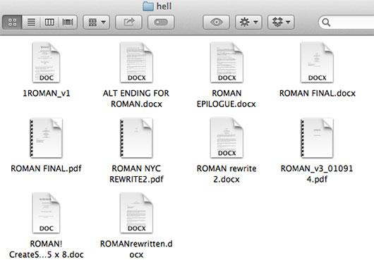 Folder on computer with novel documents