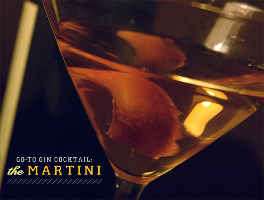 gin martini cocktail orange
