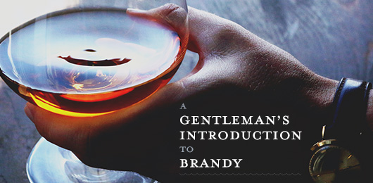 A Gentleman's Introduction to Brandy