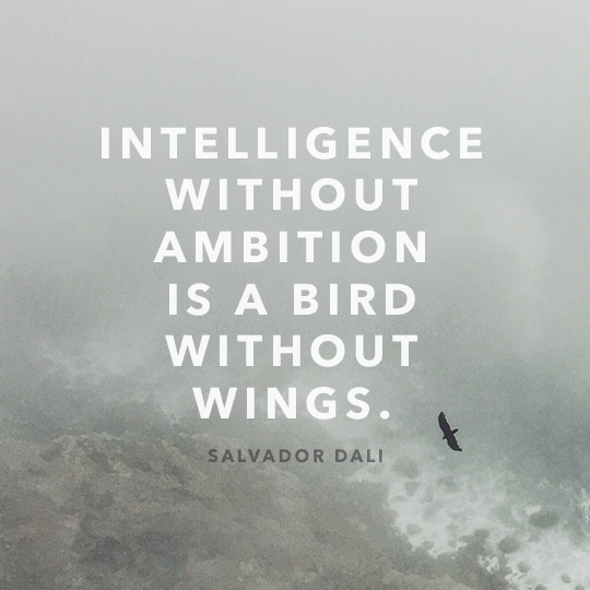 Article quote inset - Intelligence without ambition is a bird without wings