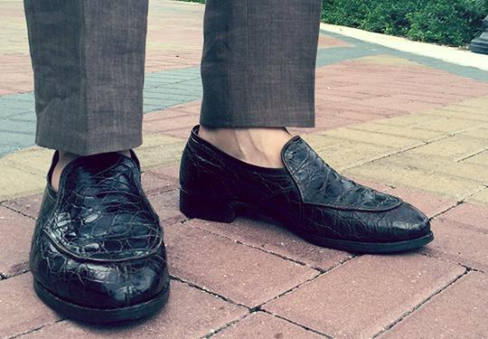 reptile shoe care