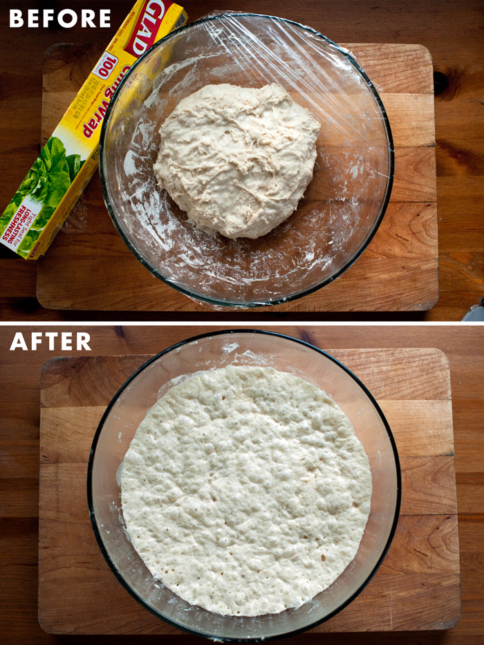 homemade bread dough rise