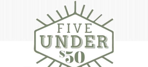 5 under 50 dollars header