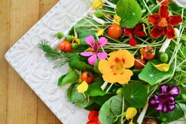 Salad made of edible flowers