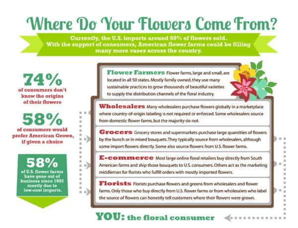 Infographic showing where flowers come from on Valentine's day history of roses