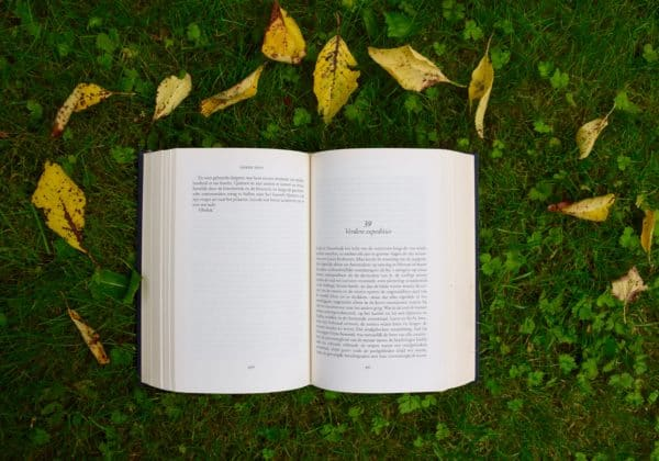 artful image of an open book on grass