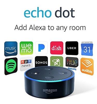 Echo dot with logos