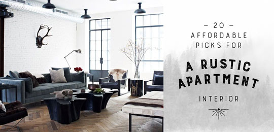 20 Affordable Picks for a Rustic Apartment Interior
