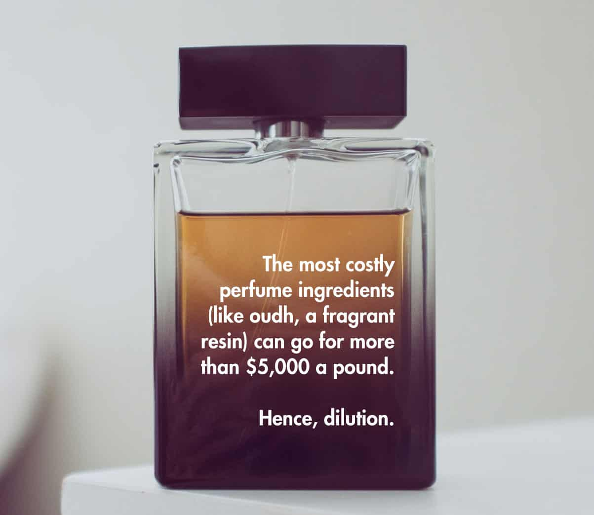 oudh cost cologne perfume