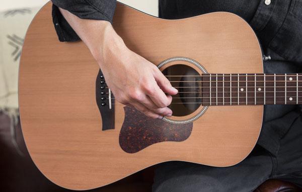 acoustic guitar wood
