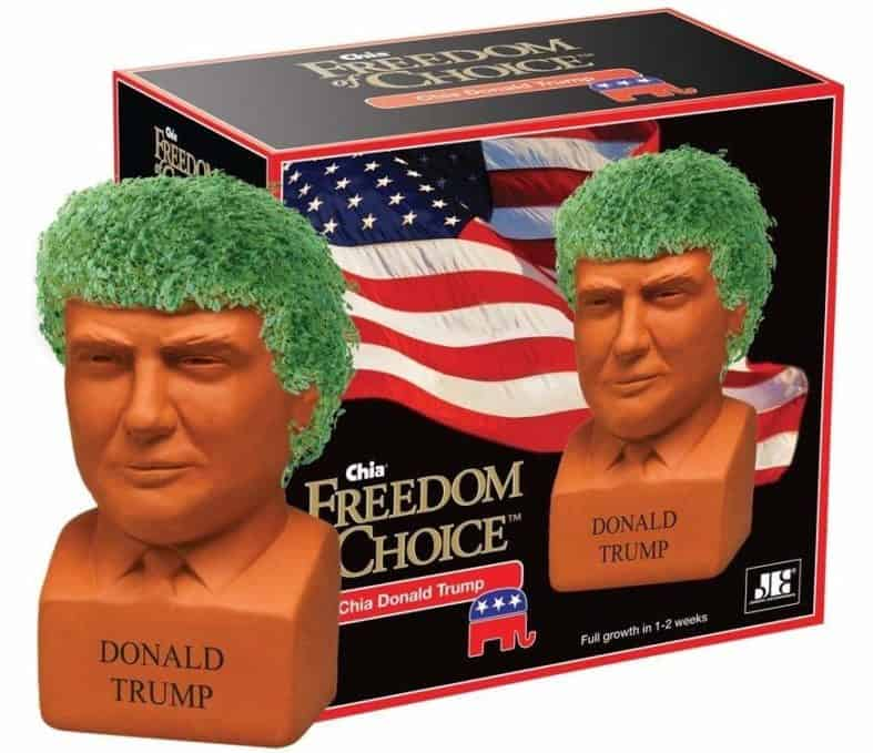 Image of Chia Pet Donald Trump, Decorative Pottery Planter, Freedom of Choice, Easy to Do and Fun to Grow, Novelty Gift, Perfect for Any Occasion