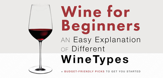 Wine for Beginners: An Easy Explanation of Different Wine Types