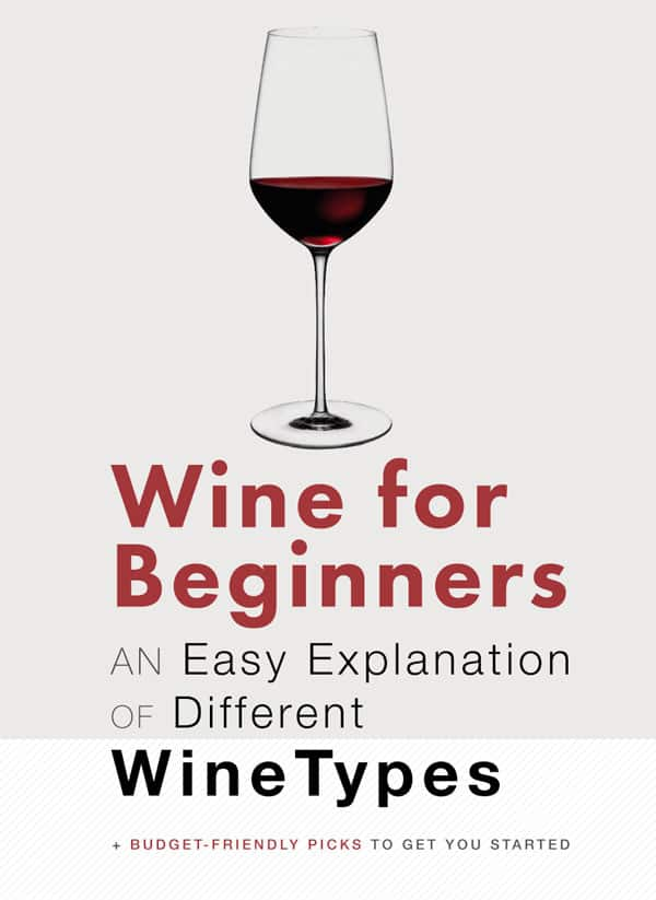 Wine For Beginners An Easy Explanation Of Different Wine Types Primer