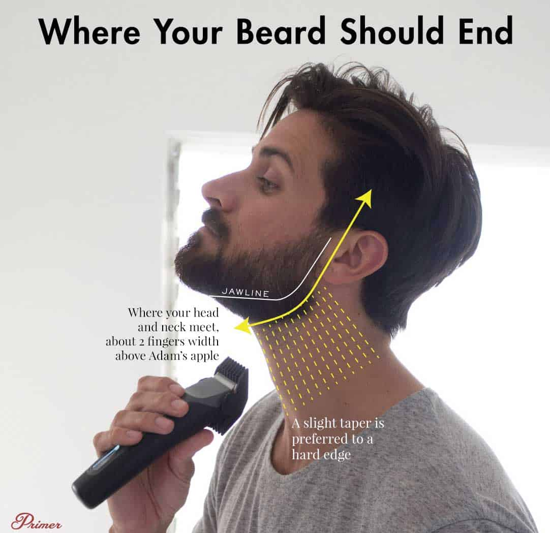 where should your beard end on your neck