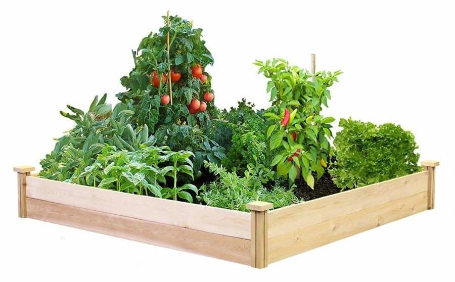 "Best Value Cedar Raised Garden Bed Planter 48"" W x 48"" L x 7"" H"