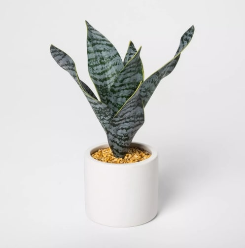 "9"" x 5"" Artificial Snake Plant In Pot Green/White - Project 62™"
