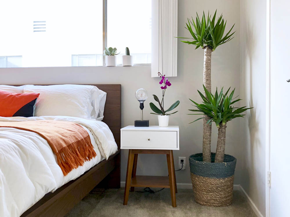 bedroom plant side table