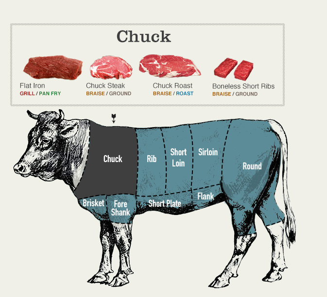 Beef cuts diagram of the chuck