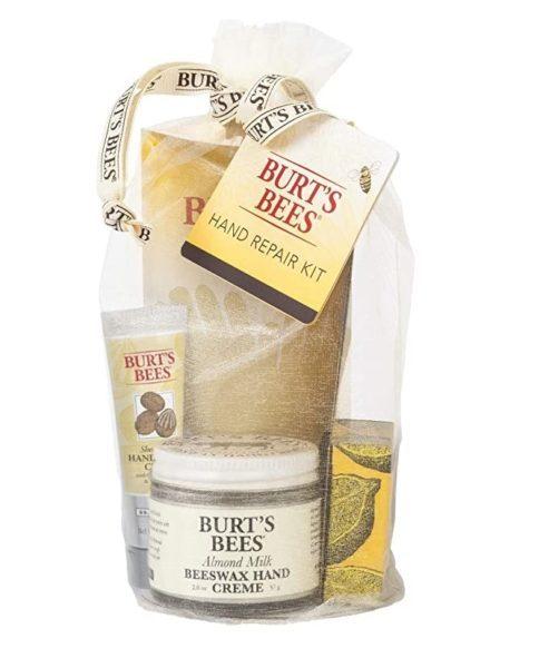 burts bees skincare kit