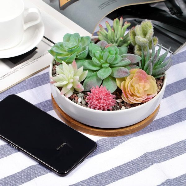 assortment of succulent plants in a white ceramic planter pot