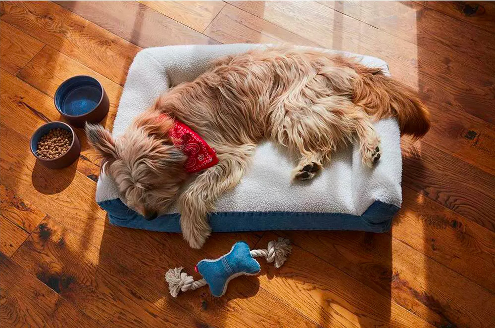 levi's x target pet bed and toys