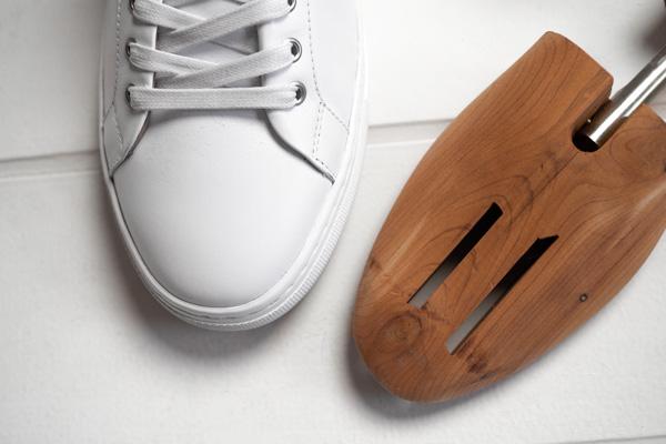 shoe tree with sneaker